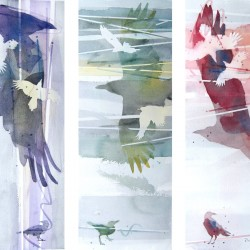 Free Crows Triptych<br>Three 6 x 17  images - $870<br>Individually framed