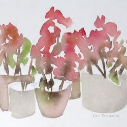 Thai Geraniums<br>11 x 8 - $270